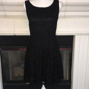 Lauren Conrad Black on Black dot cocktail dress